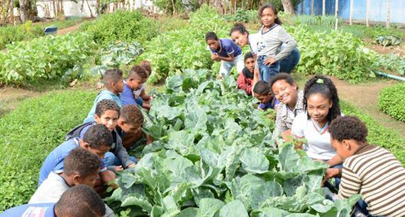 Escola rural completa 18 anos e lança publicação sobre sua proposta de educação integral